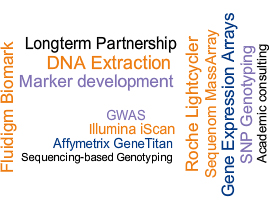 Genotyping And Gene Expression Service Platforms. Small Business Debt Relief Program. Insurance Quotes For Rental Property. Search Engine Optimization Colorado Springs. Hr Software For Small Business. Glass Replacement Utah Do I Owe The Irs Money. Paralegal Certification San Diego. Washington D C Medical Malpractice Lawyer. List Of Dental Offices Dodge Dealers Illinois